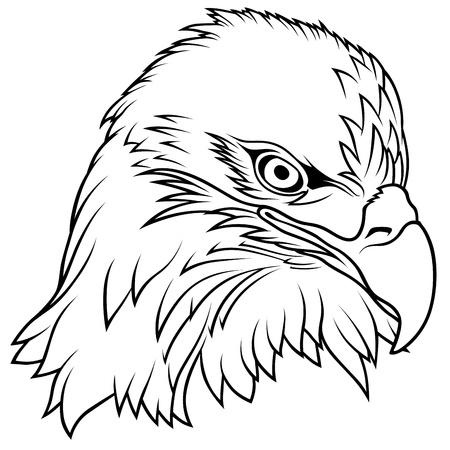 Bald Eagle Head - Black Outline Illustration, Vector