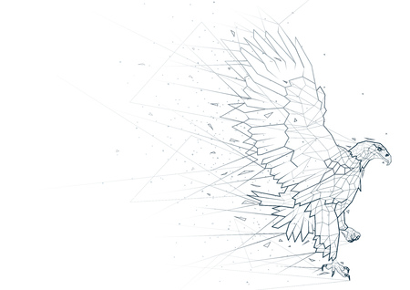 Abstract Eagle from Low Poly Wireframe Isolated on White Background - Polygonal Image Mash Line Structure, Vector Illustration