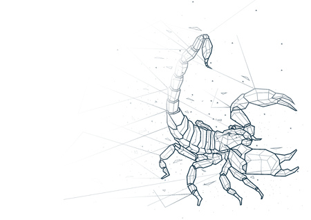 Abstract Scorpion from Low Poly Wireframe Isolated on White Background - Polygonal Image Mash Line Structure, Vector Illustration Ilustrace