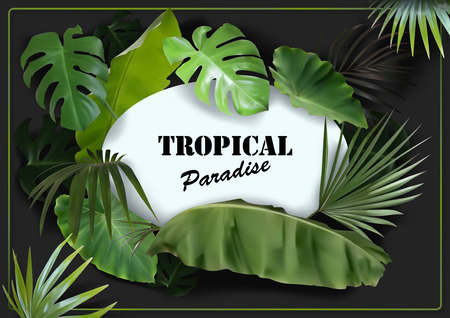Green Tropical Leaves Background with White Oval Banner on Black - Photorealistic and Detailed Illustration, Vector Graphic