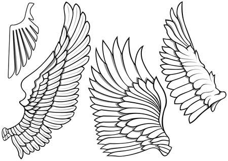 Black and White Wing Icons - Set of Four Illustrations isolated on White Background, Vector 矢量图像