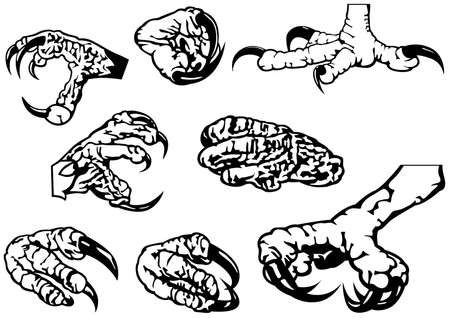 Black and White Set of Eagle Claws - Eight Black Illustration Isolated on White Background, Vector 矢量图像