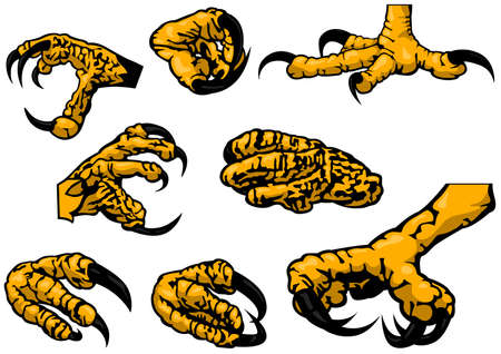 Colored Set of Eagle Claws - Eight Black Illustration Isolated on White Background, Vector