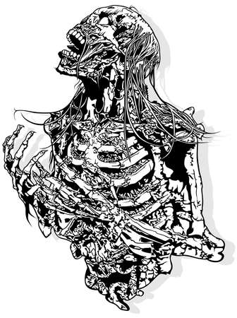 Horror Skeleton Drawing Isolated on White Background - Scary Design Element for Halloween or Metal Music Design, Vector