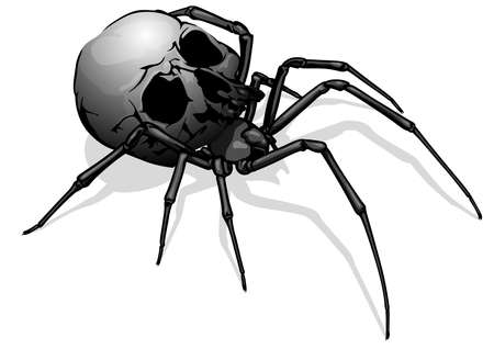 Painted Spider Skull - Scary Drawing as Part of a Halloween Design or Horror Composition Illustration, Vector Graphic