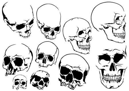 Set of 10 Black and White Human Skulls Isolated on White Background - Design Element Illustrations, Vector Illusztráció