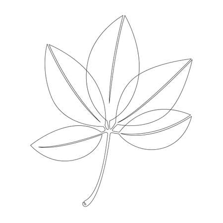 Living plant leaves of a tree. One continuous drawing line, single hand drawn art doodle isolated minimal illustration. Vettoriali