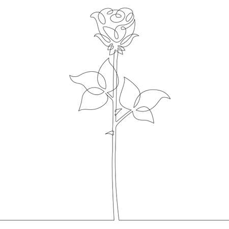 Flower plant rose. Rose petals and leaves bud. One continuous drawing line single hand drawn art doodle isolated minimal illustration.