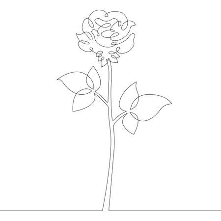 Flower plant rose. Rose petals and leaves bud. One continuous drawing line logo single hand drawn art doodle isolated minimal illustration.