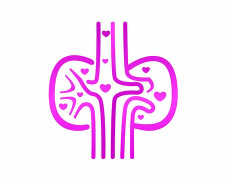 Healthy Kidneys and Excretion Flow combined with Love Symbol