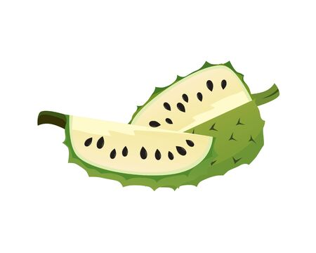 Detailed Soursop and the Slices Illustration