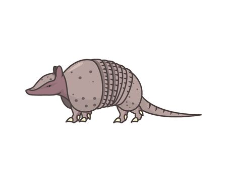 Detailed Armadillo the Mammal Illustration