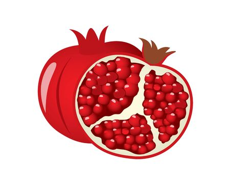 Detailed Pomegranate with the Slice Illustration