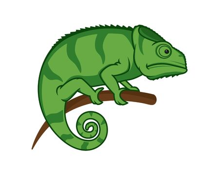Chameleon Perched on the Branch Illustration