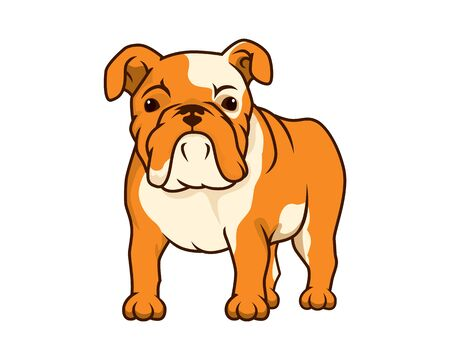 Detailed Bulldog with Standing and Watching Gesture Illustration