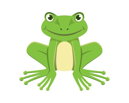 Detailed Smiling Green Frog Illustration with Cartoon Style