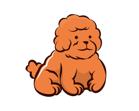 Cute and Sweet Little Poodle Dog Illustration Vector