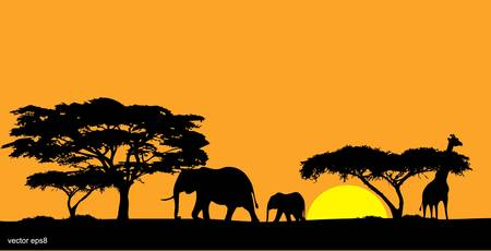 African savanna Vector