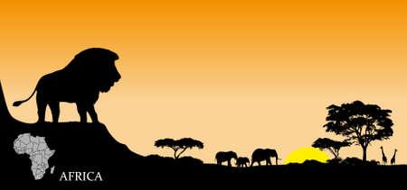 siluetas de elefantes: Sabana africana