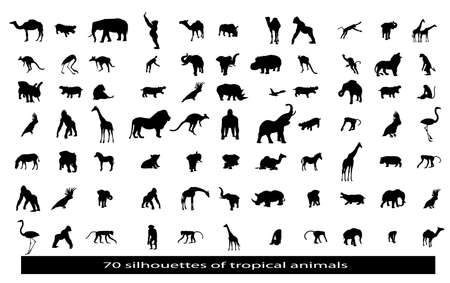 70 silhouettes of the African animals Vector