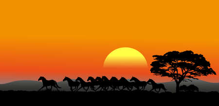 The pictures show a running herd at sunset Vector