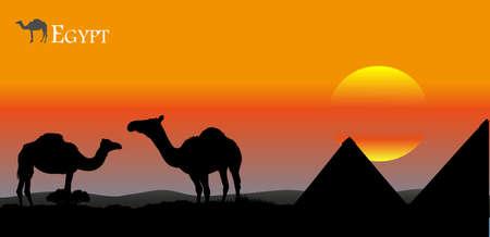 nile: sunset over Egypt