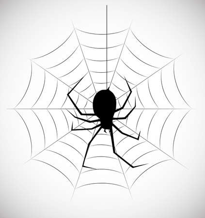 black and white spiders: on the image the silhouette of a spider in a web is presented