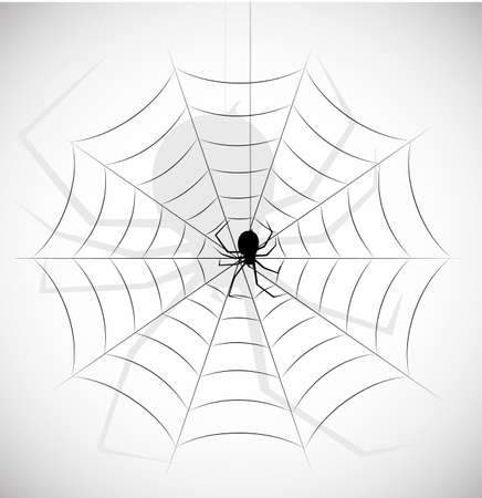 on the image the silhouette of a spider in a web is presented Stock Vector - 18564294