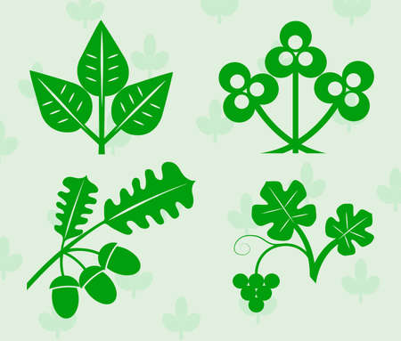 branch to grow up: plant leaves for design Illustration