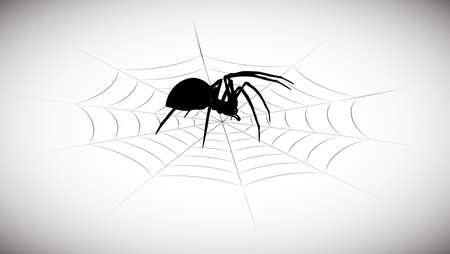 black widow: Spider in the web Illustration