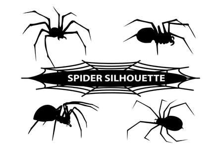 black widow: silhouette spider Illustration