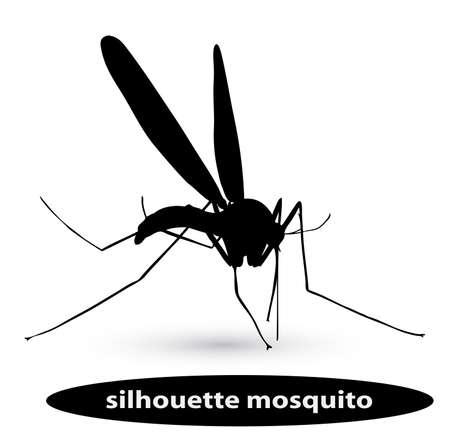 infectious disease: mosquito silueta Vectores