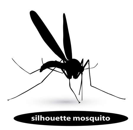 disease carrier: silhouette mosquito