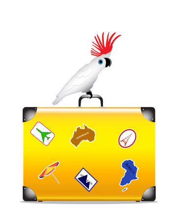 cockatoo: parrot sits on a suitcase on a white background