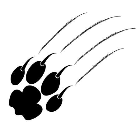 trace of claws of a predator on a white background Stock Vector - 22268807