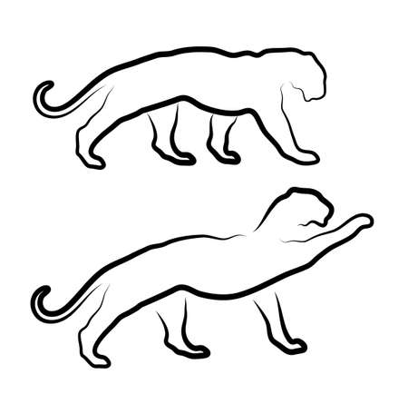 cougar: cat silhouette on a white background Illustration