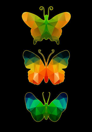 Butterfly of polygons on a black background Vector
