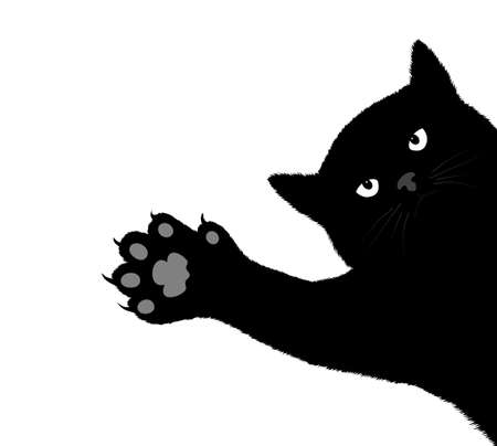 cat s claws scratch a background Vector