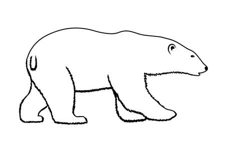 polar bear on a white background Vector