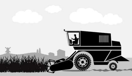 corny: rural landscape, harvesting