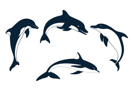 Set of silhouettes of   dolphin