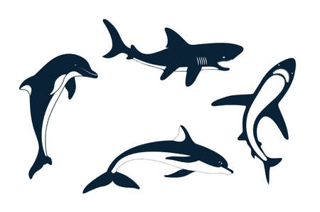 cartoon swimming: Set of silhouettes of a shark and dolphin