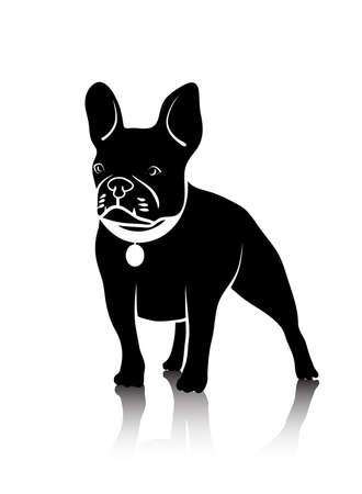drawing of a dog of fighting breed Vector