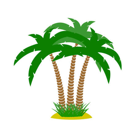 thickets: thickets of palm trees on a white background