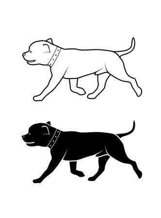 cynology: drawing of a dog of fighting breed Illustration