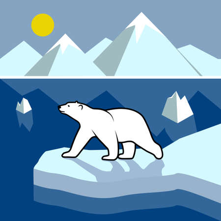 polar climate: Polar bear on an ice floe, polar landscape.