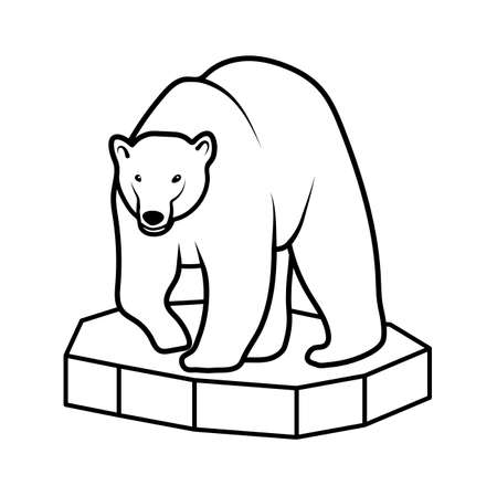 polar climate: polar bear on an ice floe