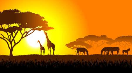 Sabana africana un paisaje de la tarde