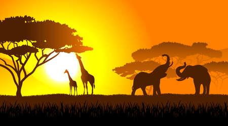 Savane africaine un paysage de soirée Vecteurs