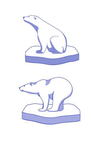 climate changes: polar bear on an ice floe